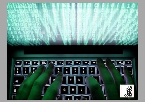 Empresas subutilizam profissionais de cibersegurança